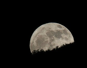 By Brian from Bountiful, Utah, USA (Bad Moon Rising) [CC-BY-2.0 (www.creativecommons.org/licenses/by/2.0)], via Wikimedia Commons