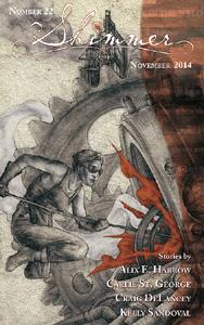 300_Shimmer-22-Cover