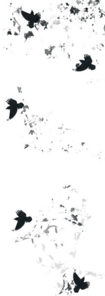 death | Shimmer